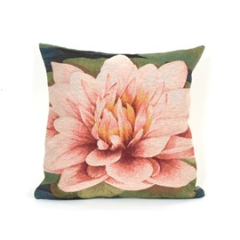 Cushion Waterlily