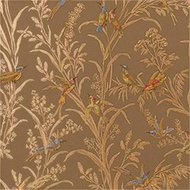 Wallpaper Augustine