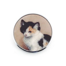Compact Mirror Awakening Kitten
