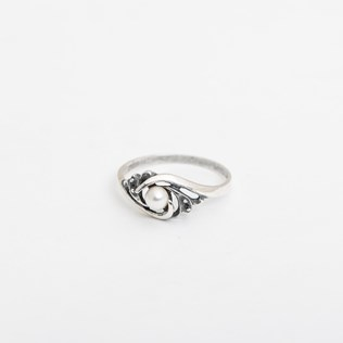 voorbeeld van een van onze  Rings
